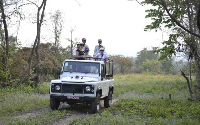 Why we no longer Jeep Drive in Chitwan